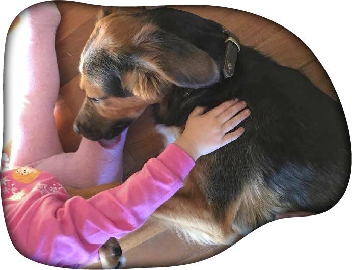 Alma Therapiehund mit Kind 1