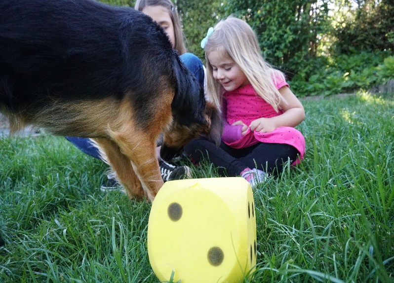 Tiergestützte Therapie Therapiehund spielt mit Maedchen