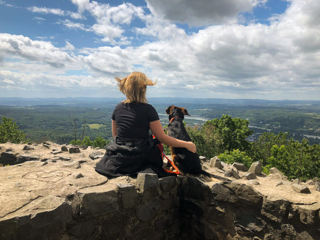 Hund und Mensch von hinten fotografiert auf der Löwenburg mit Ausblick