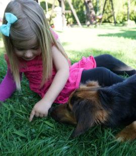 Ein Mädchen zeigt Alma etwas im Gras